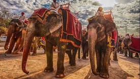 Incredible India /Rajastan +Goa /