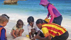Powitanie z Afryką / Turtle Bay