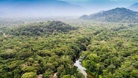 Głęboki oddech Świata - Amazonia