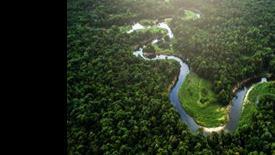 Nieokiełznana przyroda - Manaus, Iguacu