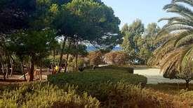 Aurum dei Pini Resort
