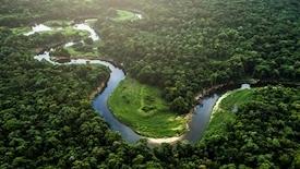 Zielona mapa Brazylii - Amazonia