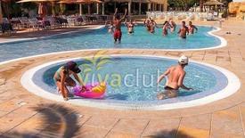 Sun Holiday Beach