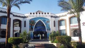 Viva Sharm (ex. Falcon Viva)