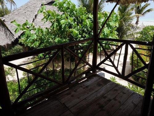 Hotel casa del mar zanzibar tanzania for Plante zanzibar
