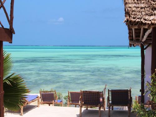 Hotel zanzest beach bungalows zanzibar tanzania for Plante zanzibar