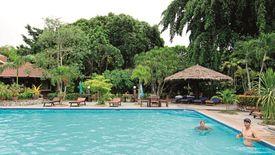 Palm Garden (Pattaya)