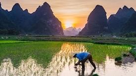Indie i Wietnam w pigułce