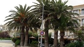 Romantic (Port de Pollenca)