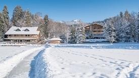 Alpenhotel (Kitzbuhel)