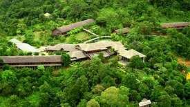 Hilton Batang Al Longhouse