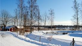 Narciarskie Falun