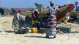Gambia i Senegal