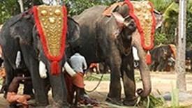 Indie Południowe, Kerala