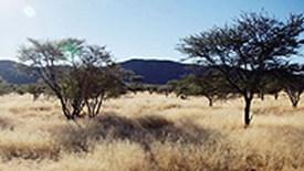 Namibia - nieodkryty raj