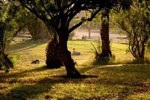 park-Agadir.jpg