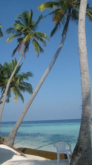 srilanka-17.jpg