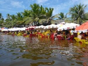 Brazylia_stan_bahia_05.jpg