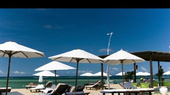 Przy hotelu: basenik, lezaczki, tropikalna roślinnośc...
