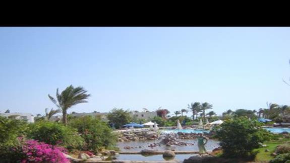Ogród hotelowy