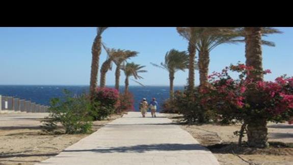 droga do plazy