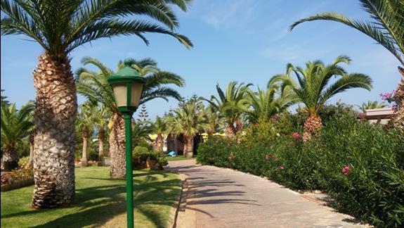 Hotelowe ogrody