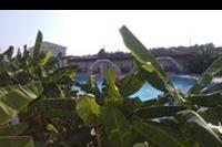 Hotel Smy Princess of Kos - Bananowce przy basenie