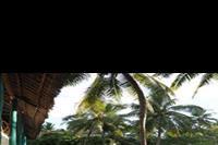 Hotel Kiwengwa Beach Resort - Widok z tarasu w pokoju standardowym