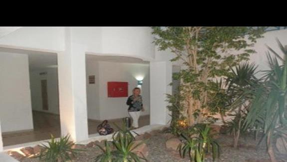 W hotelu duzo zieleni