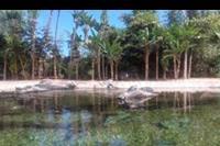 Puerto de la Cruz - Loro Park