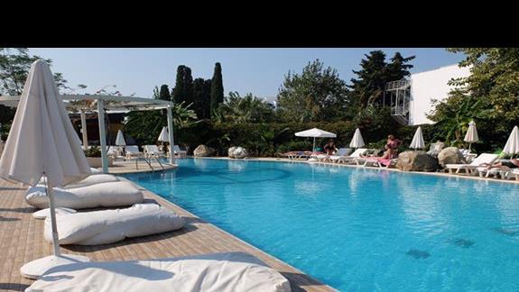 basen w hotelu Palm Beach