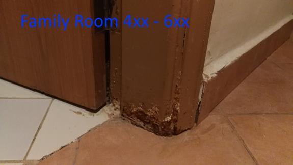 Pokój 4xx - Family Room