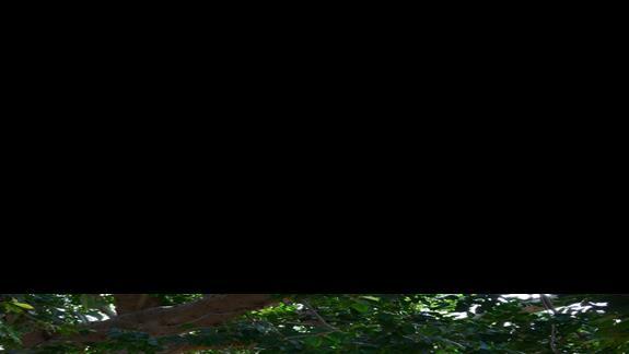 uliczki Creta Maris Beach Resort