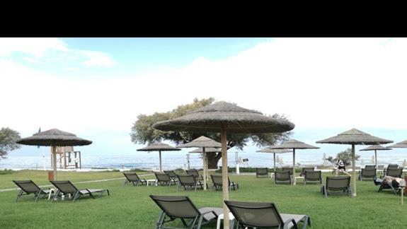 ogród Geraniotis Beach