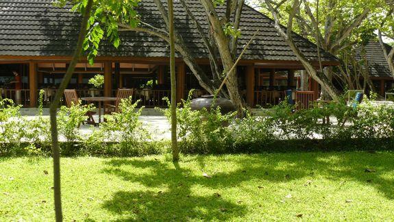 ogród i restauracja