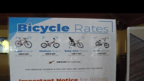 możliwość wynajęcia roweru