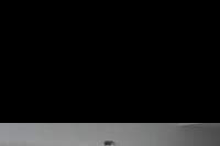 Hotel Palotel Luxury -