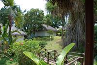 Hotel Orangea - ogród