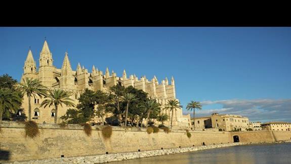 Palma - katedra
