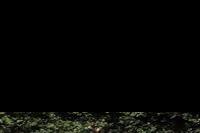 Hotel Red Sea Grand Resort - Widok z balkonu