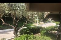 Hotel Porto Angeli - widok z pokoju na parterze