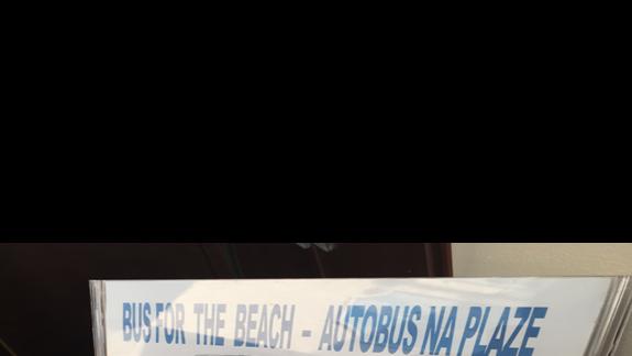 Rozklad busów