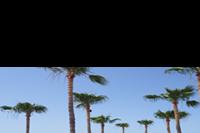 Hotel The Dome Beach Resort - Widok z pokoju