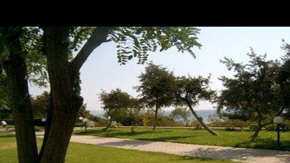 Plaza widziana z bungalowu