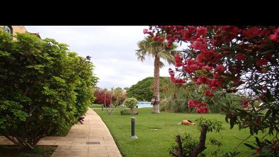 Hotelowy park, albo raczej ogród.