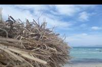 Hotel Grupotel Amapola - Plaża