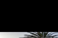 Costa Del Silencio -