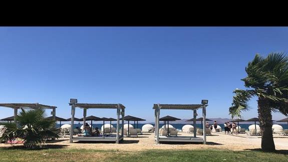 Lózka i kosze na plazy