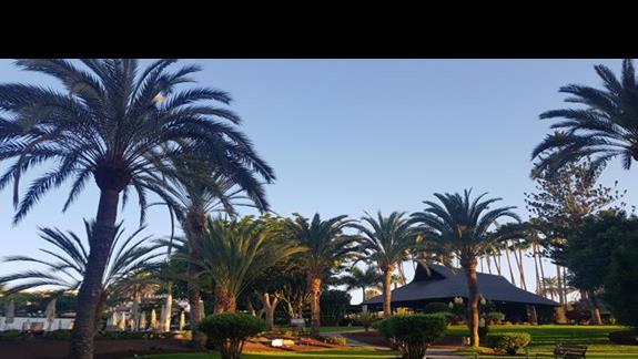 Piękny ogród przy basenach hotelu