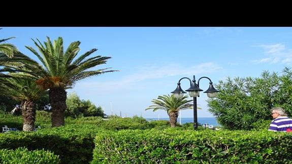 ogród, przejscie do plazy